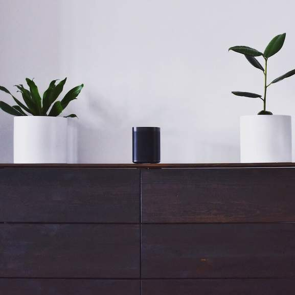 Sonos One black on wooden side between two white potted plants