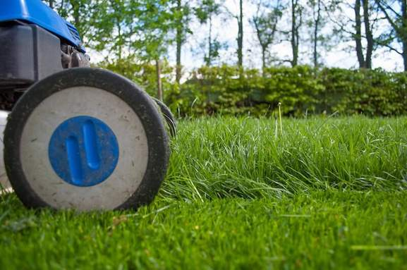close-up of a lawnmower cutting the grass