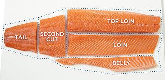 cuts of a salmon fish fillet