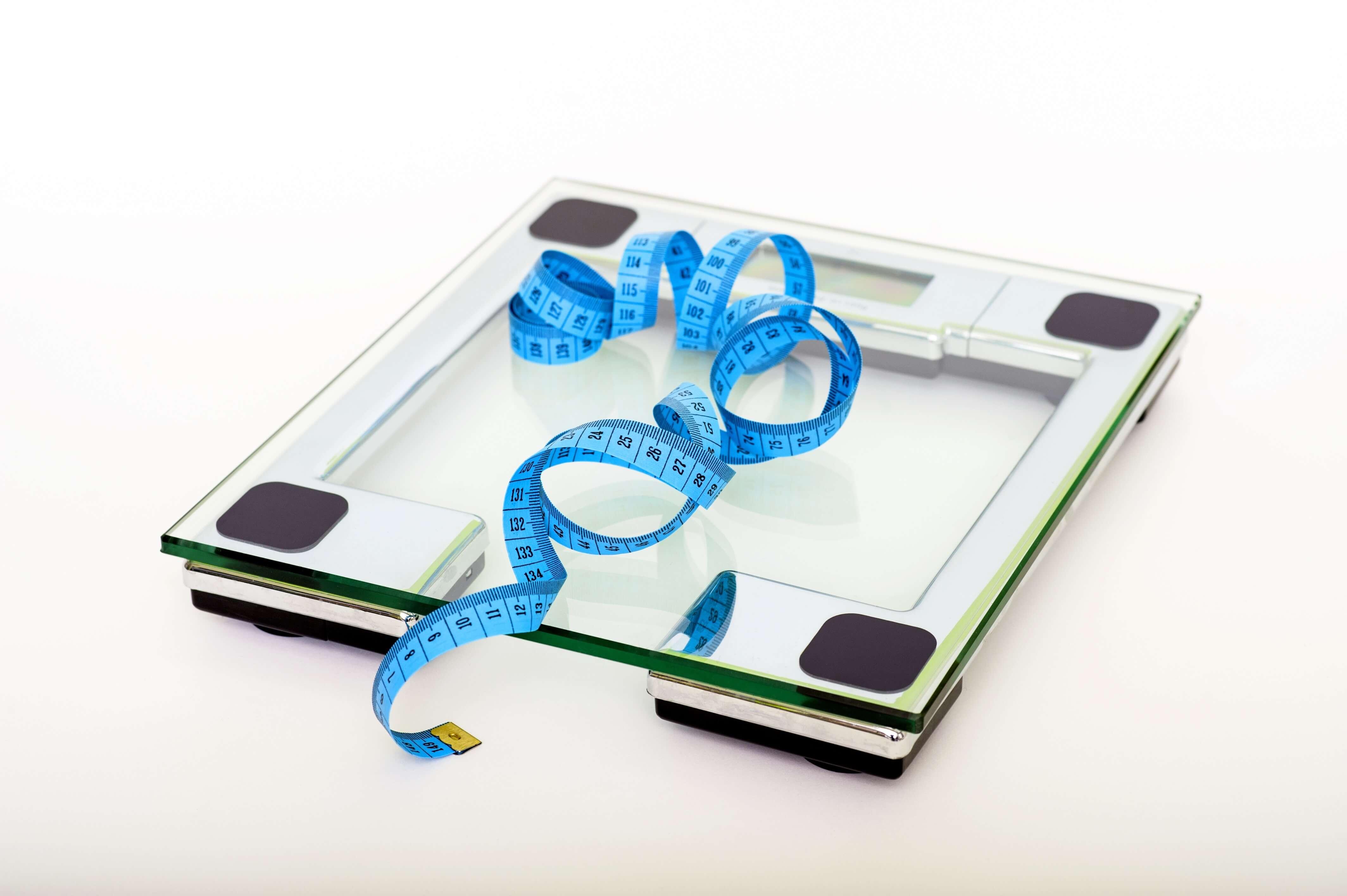 weight watchers-gallery