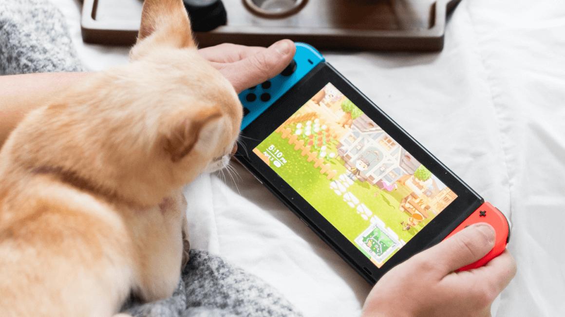 Nintendo Switch Controller 2