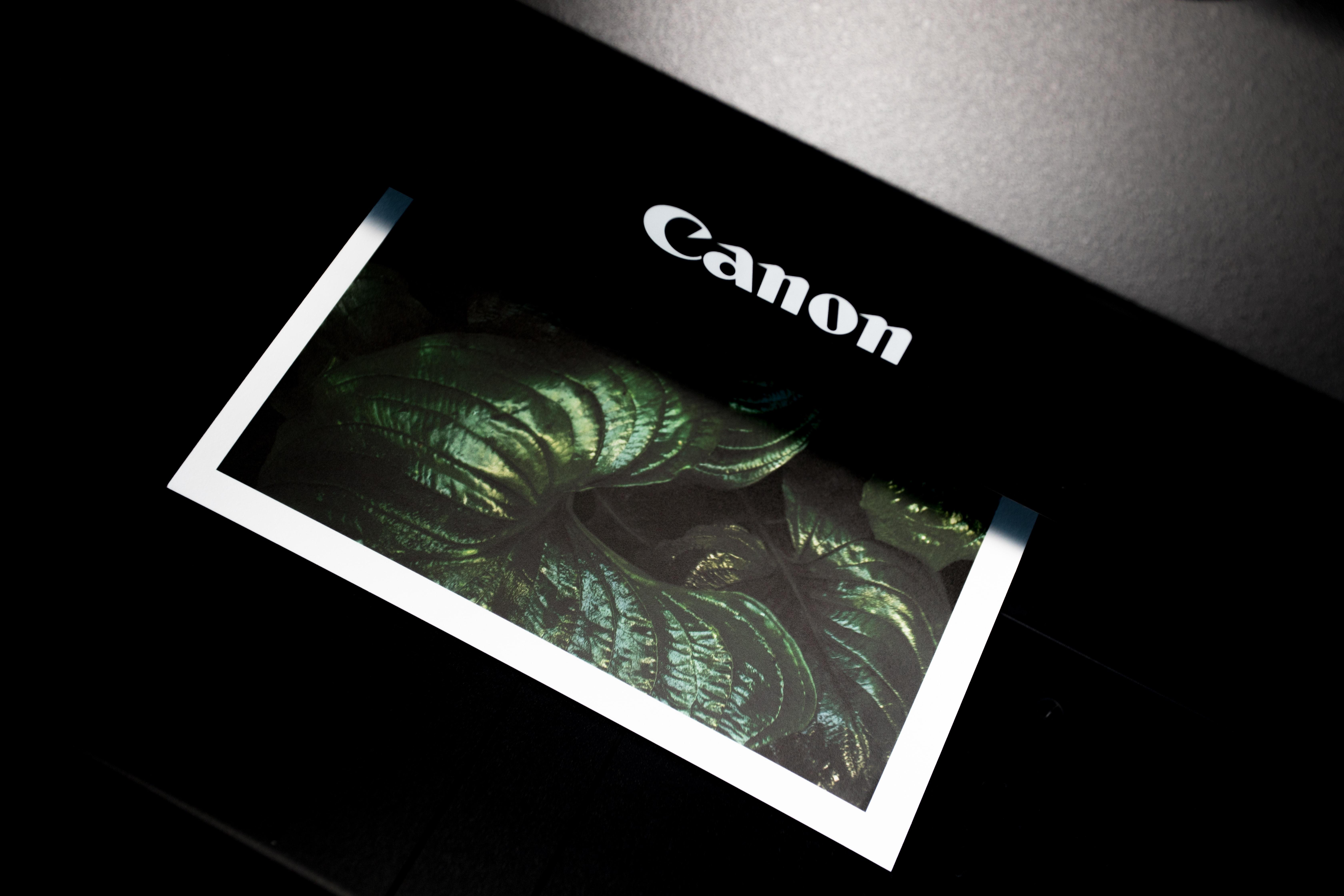 printer & printer supplies-gallery