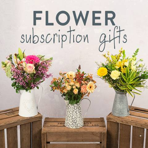bunches-gift_card_purchase-how-to