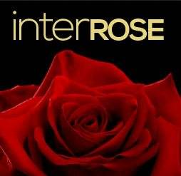 10% off Roses with code @ interRose