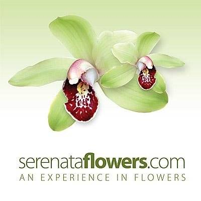 10% off Your Flower Order with voucher @ Serenata Flowers