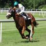 Horse Races Deals