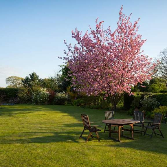 Garden furniture garden chairs and garden table in the garden with blossom tree and