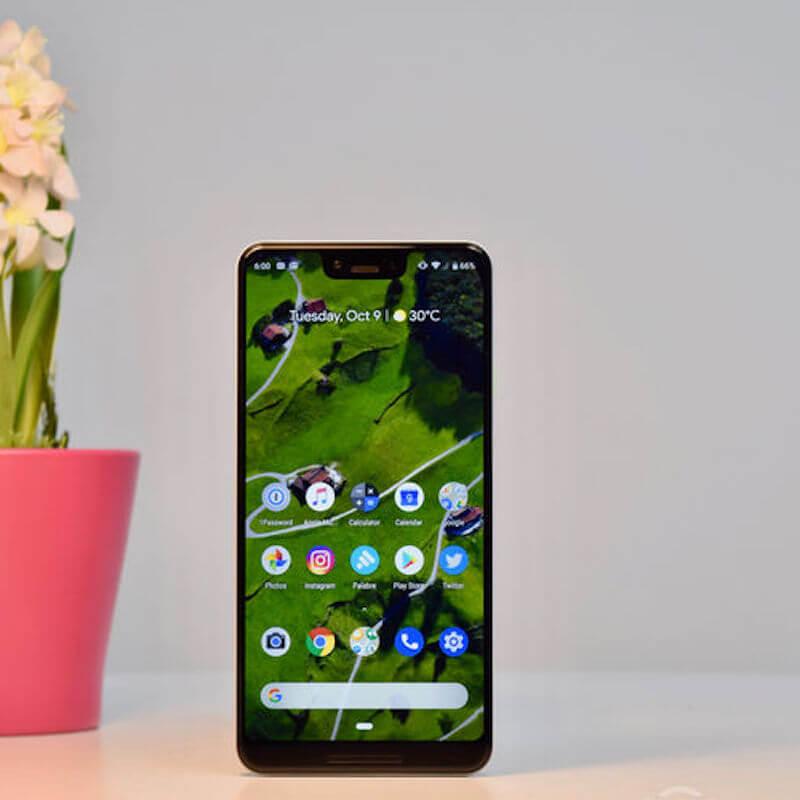 Google Pixel 3XL next to plant