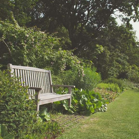 Wooden garden bench by hedge and plant beds