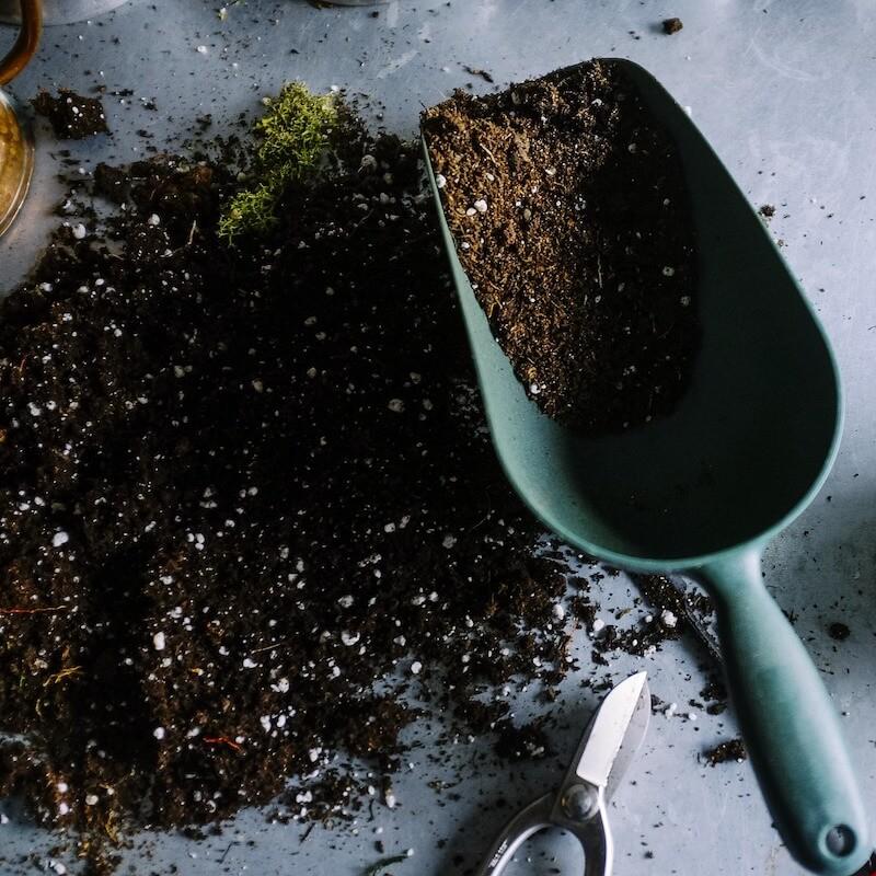 compost in trowel