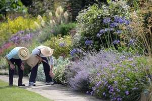Royal Horticultural Society membership 12 months for the price of 9 £41.25