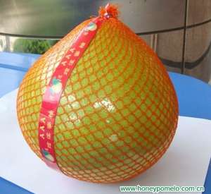 Pomelo NOW only 59p in Lidl (my one anyways) and approx £2 in most other supermarkets delicious fruit like a nice tasting grapefruit