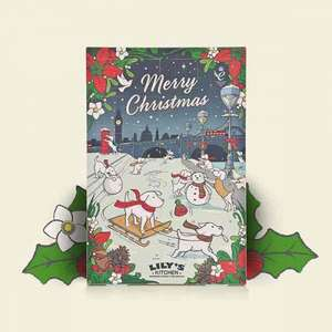 Lily's kitchen dog or cat advent calendar £6.99 delivered with free treat worth up to £3.95