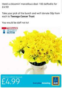 100 Daffodils for only £4.99 (includes 50p donation to Teenage Cancer Trust) Valentines gift? @ Aldi