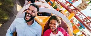 Disney World 14 day passes at the price of 7 plus free Toy Story Magic Bands from £375 @ Disney World