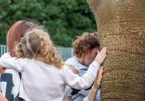 £2.50 off Woburn Safari Park tickets for Easter holidays using code
