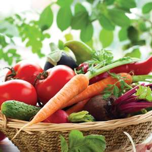 All Vegetable Seeds £1 or less (+ £1.95 delivery) @ Thompson & Morgan