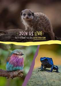 Chester Zoo - Free Virtual Zoo Tour - Friday 3rd April 2020