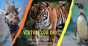 Free Virtual Zoo Day 5th of Feb @ Chester Zoo