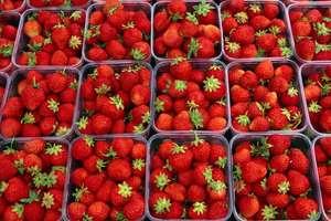 1KG Strawberries for £3.50 instore at Spar