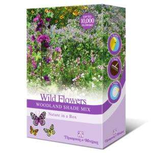 Free Wildflower Seeds Sachet containing five types of British wildflowers at Airwick