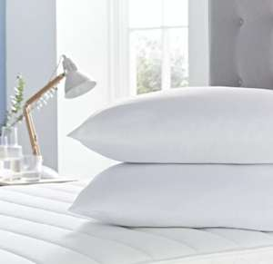 Silentnight summer cool pillows pair £4 @ Tesco Handforth