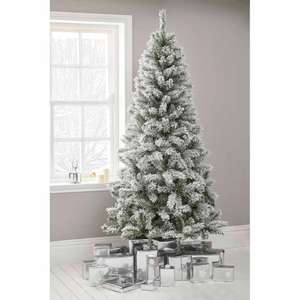 20% off all Christmas Trees with code (online only / £5 delivery) @ Wilko