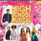 Official High School Musical Calendar 2008 just £1.00 - good filler item (or £4.23 delivered)
