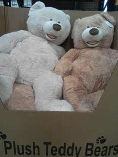 """53"""" Giant plush teddy bears for £21 INSTORE at Costco avail Nationwide RRP £60"""