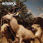 Interpol - Our Love To Admire only £3.99!