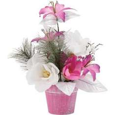 Lily Christmas Rose Pot was £7.99, now £2 @ Homebase