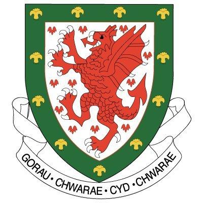 International Football Friendly: Wales vs Iceland, Weds 5th March (7:45pm) @ Cardiff City Stadium: Child £1, Seniors £5, Adult £10