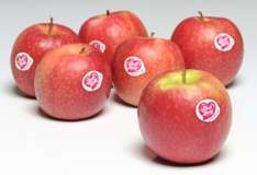 6 pink lady apples for £1 @ Farmfoods