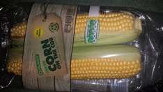 Oaklands fresh corn on the cob 99p @ Lidl (2 in a pack)