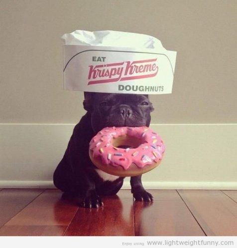 Krispy Kreme DOUBLE Dozen (24) Every Monday in July & August for £13 @ Krispy Kreme