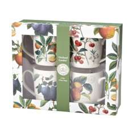 Royal Botanic Gardens at Kew Orchard Garden Mugs Set of 4 £3.00 was£20.00@ Sainsbury's