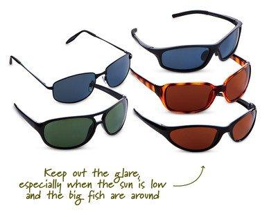 Polarised Sunglasses from 3rd Aug £3.99  at ALDI