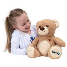 Toy-Fi Teddy from Smythstoys for £14.99