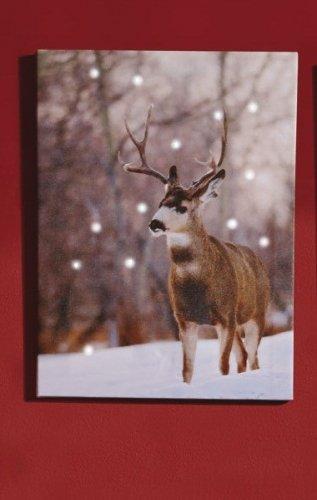reindeer led battery canvas £3.99 plus £4.99 P&P was £19.99 @ 24 studio