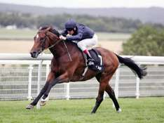 Own a share in a racehorse for a season, visit stables and go to races from just £70 at Crowdracing