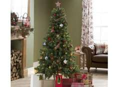 ** Evergreen Fir 6ft Christmas Tree only £3.75 @ Tesco Direct **