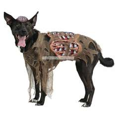Zombie dog outfit for your dog - £17.99 @ Party Delights (+£3.95 P&P) - £21.94