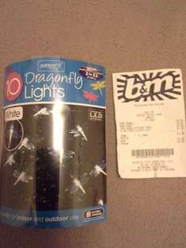 Dragonfly lights 50p @ B&M