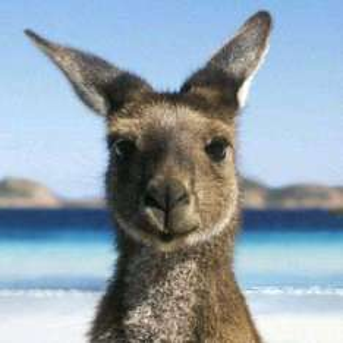 Return flight London to Melbourne for 2 adults £1177.70 via Travelbag