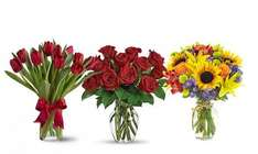 £50 to spend for only £10.00 at Flowers Delivery 4 U @ Groupon (Using app/code)