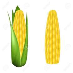 Lidl - Corn on the cob 3 for £1