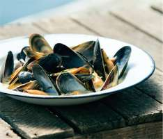 "Lidl ""Mussel Beach"" tickets - FREE mussel tasting and ""Scottish beach"" in London (Brick Lane)"