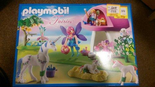 Playmobil Fairies Set 6055 £19.99 @ Smyths Toys (Instore only) less 20% until Monday