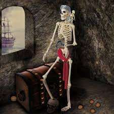 pirate skeleton with parrot £17 Costco