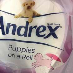 Andrex toilet roll 4 pack £1.00 @ Iceland